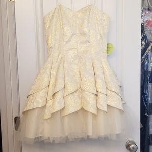 BNWT Windsor Cocktail Dress Cream & Gold